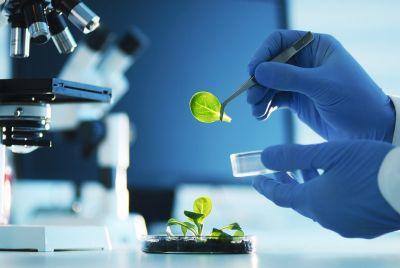 iShares Nasdaq Biotechnology ETF