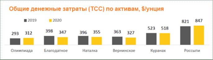 Общие денежные затраты Полюса (TCC) по активам